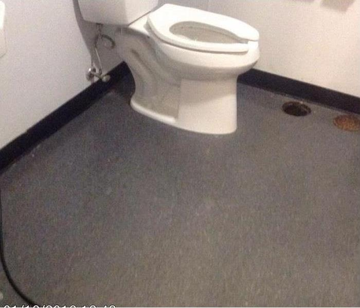 Clean bathroom with white toilet