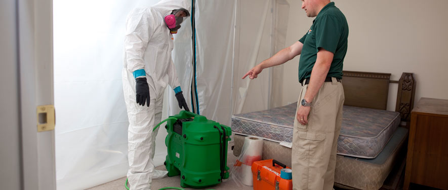 Queens, NY mold removal process